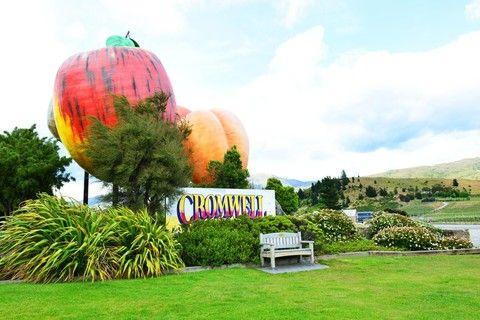克倫威爾-水果鎮
