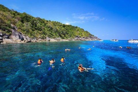珊瑚花園浮潛