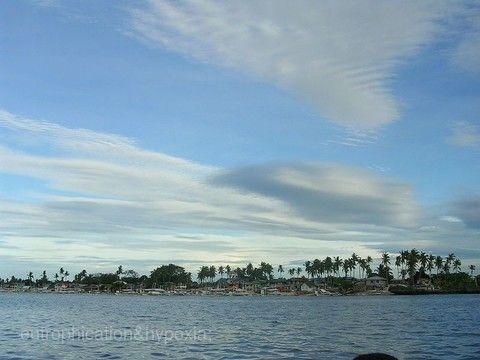 奧蘭哥島Olango Island