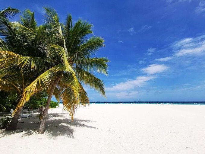藍色美人蕉島渡假