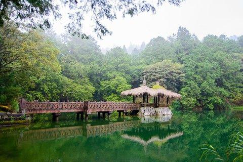 【二人成行】阿里山悠閒渡假.阿里山森林鐵路.觀日出3日