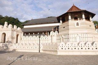 斯里蘭卡 米內日亞 坎達拉瑪生態之旅9 天