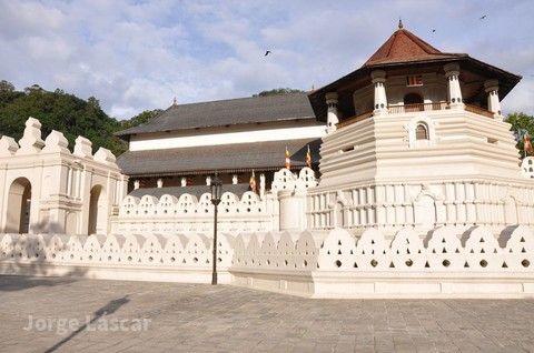 ※農曆新年免請假!!【錫蘭紅茶豪華假期】 斯里蘭卡文化和大自然之旅 8日