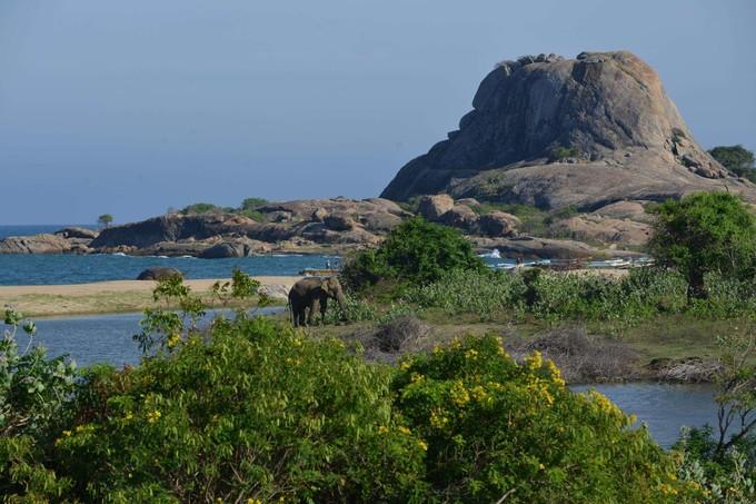 斯里蘭卡野生動物園天空之城斯基里雅五星渡假村全覽九日遊(6月起)