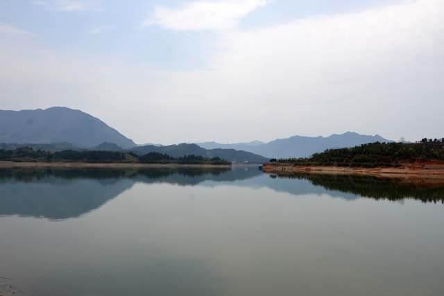 太平湖濕地