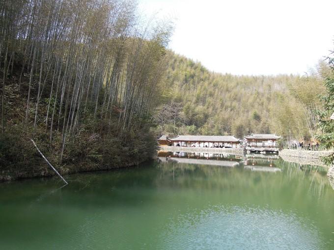 黃山竹海木坑