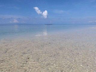 巴里卡薩島 Balicasag Reef