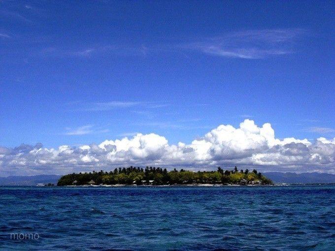 宿霧~鯨鯊、薄荷島、雙跳島超值5+1日-2人成行-台灣虎航