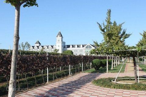 張裕國際葡萄酒城
