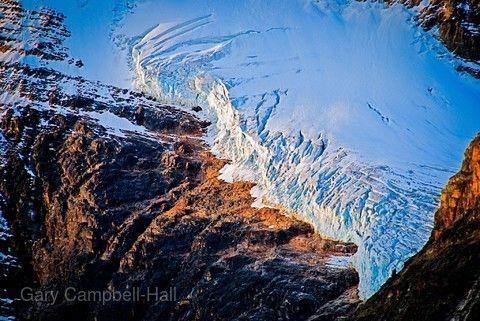 哥倫比亞大冰原