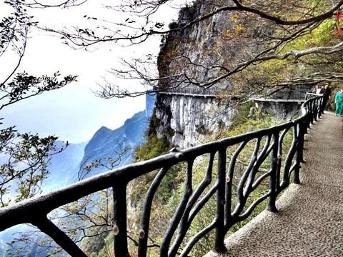 張家界、大峽谷玻璃橋、天門山5日(五星無購物、三排椅+WIFI)