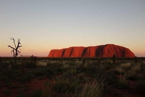 【主題旅遊】澳洲烏魯魯馬拉松 艾爾斯岩 卡塔丘塔 原野星空 經典雪梨 慢遊墨爾本9日