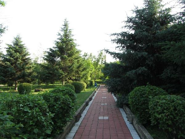 哈爾濱森林植物園
