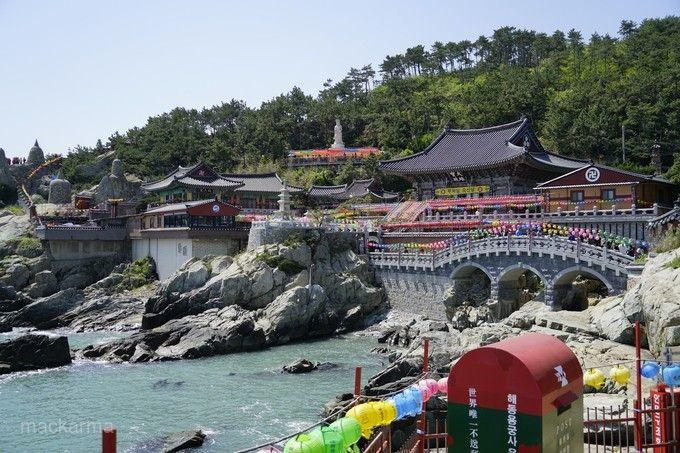 釜山我就是霸氣~蟹塔傳說(長腳蟹吃到飽+蟹膏炒飯)、入住五星樂天酒店、八公山道立公園五天【不上攝影】
