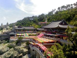 釜山玩很大~農村採果樂、馬飛亭璧畫村、 薰香花園、泰迪熊5日【早晚】
