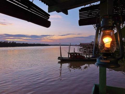 瓜拉雪蘭莪螢火蟲河