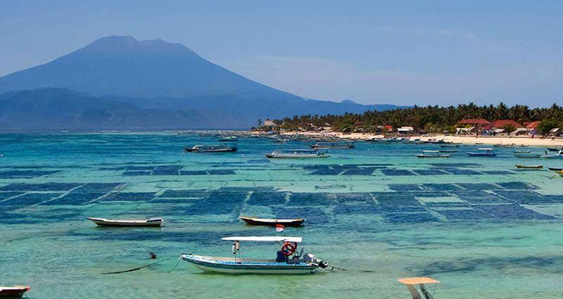 進擊的巴里島-網紅鞦韆+鳥巢、海底摩托車+監獄+漫步五天遊