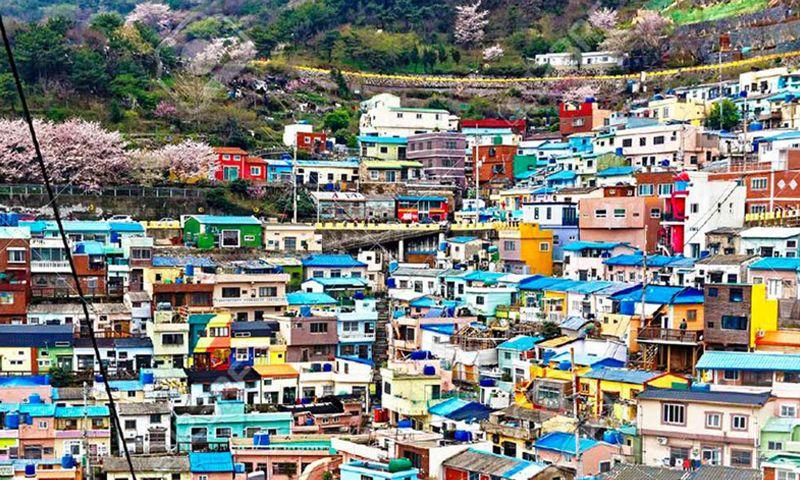 韓國釜山巨濟島五星雙天空步道長腳蟹汗蒸幕五天(不上攝影)