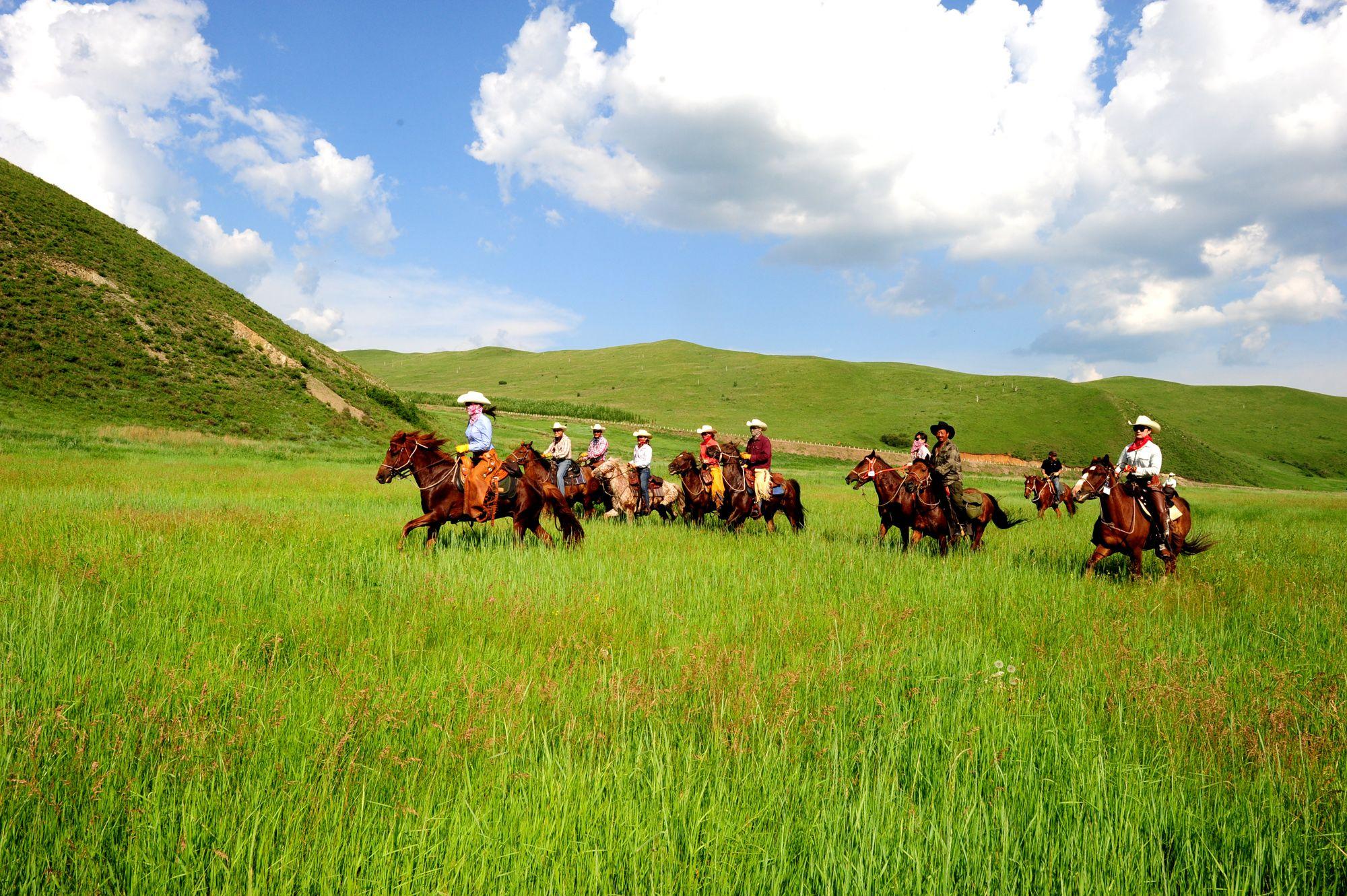 內蒙古呼倫貝爾草原豪華八天