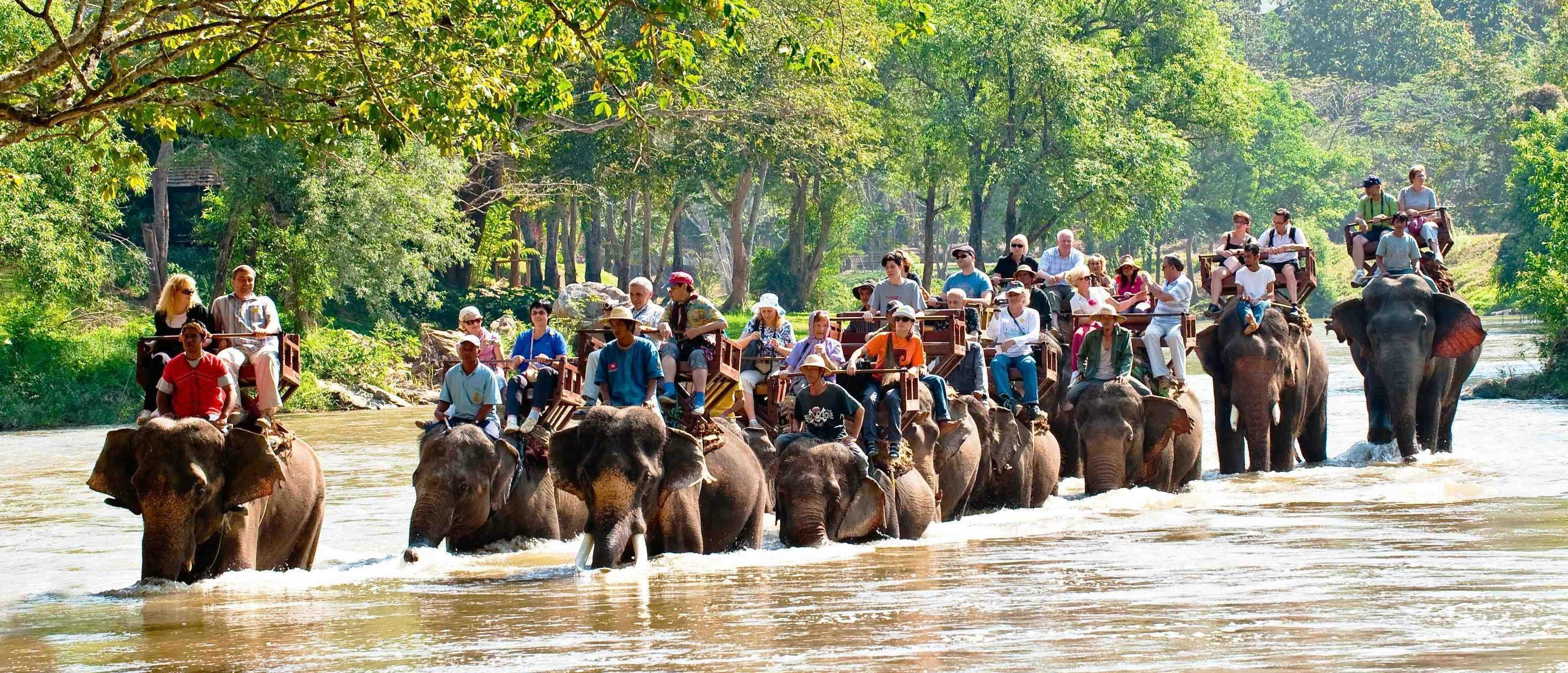 泰國泰北清邁泰好玩長頸族村騎大象叢林探險六天