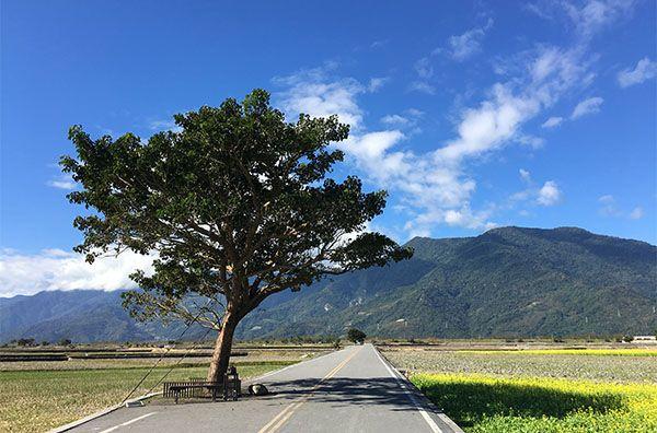 【飛機來回】縱情台東山海風情三日