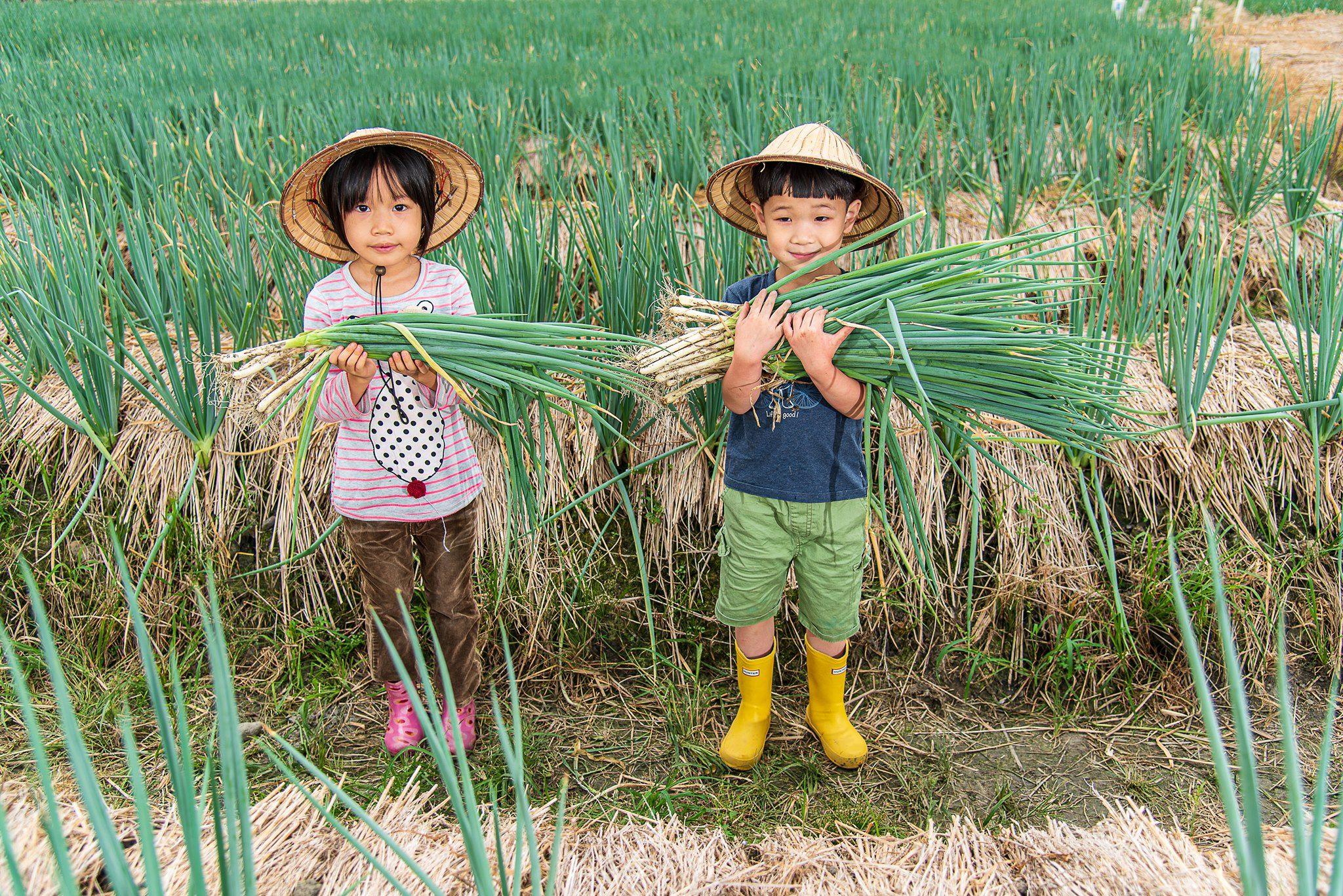 宜蘭 三星蔥農場 蘭陽博物館 親子 2日遊