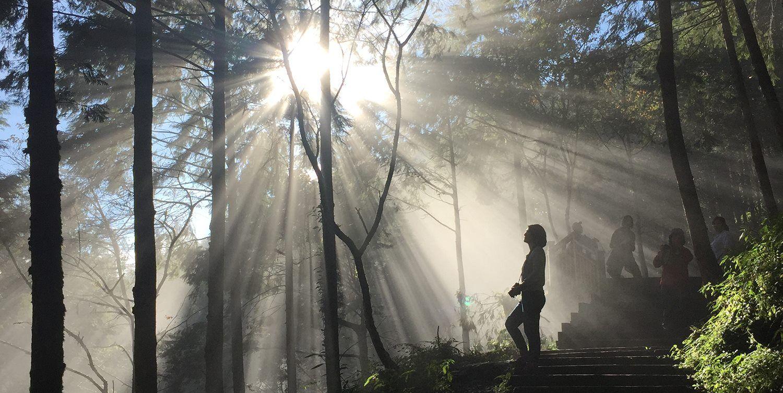 宜蘭棲蘭神木~翠峰湖 3日遊