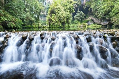 專業攝影師跟拍:溪頭、杉林溪漫遊 兩天一夜森呼吸之旅