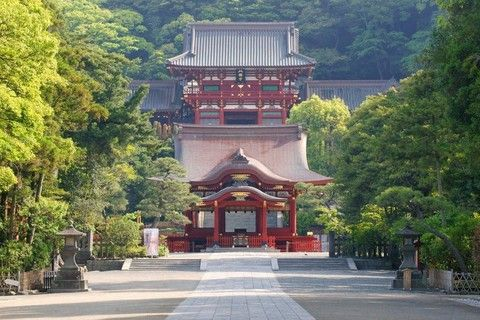 【伊豆傳說】橫濱、鎌倉、伊豆、箱根、關東精選5日